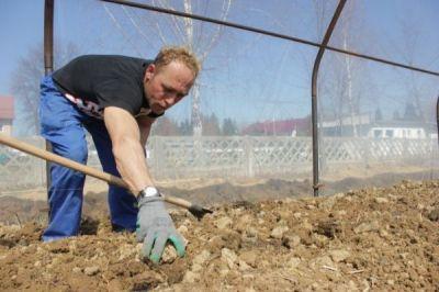Self-Sufficiency: Greenhouse Renews Hope